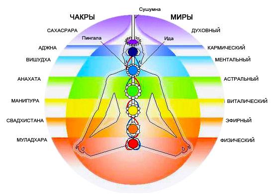 Положение семи чакр в теле